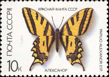 Алексанор
