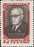 Портрет Н.Ф. Гамалеи